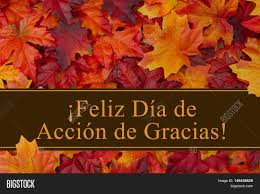 thanksgiving greeting pictures happy thanksgiving greeting in spanish some fall leaves with text