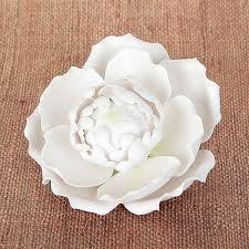 blooming peony white u2013 caljavaonline