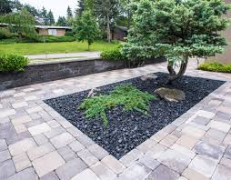 modern zen garden courtyard lotus gardenscapes