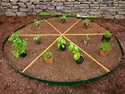 grow your own pizza ingredients in your garden hgtv
