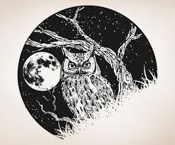 vinyl wall decal sticker owl and moon os aa1557