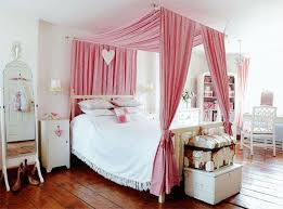 Pink Canopy Bed Dreamy Canopy Bed Projects Decorating Your Small Space