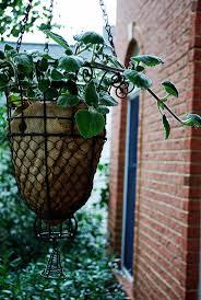 156 best hanging baskets images on pinterest hanging baskets