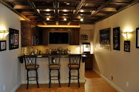 Lights For Drop Ceiling Basement by Basement With Theater Traditional Basement Detroit By Blue