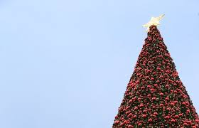 shopping u0026 fashion cheshire oaks lights up for christmas so