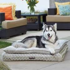pillow top dog bed kirkland signature pillow top orthopedic pet napper in blue gray