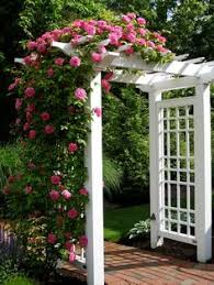 The Perfect Pergolaarbor To Go Next To The Garage Leading To The - Backyard arbor design ideas