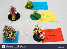 Wildflower Arrangements Prize Winning Miniature Flower Arrangements At Gwenddwr Show Stock