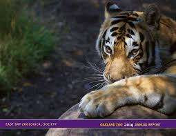 2014 oakland zoo annual report by heather baker issuu