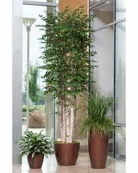 aliexpress buy home decor mini bonsai tree set artificial