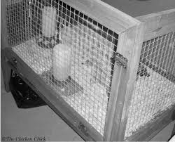 Rabbit Hutch Set Up The Chicken How To Build A Better Brooder For Raising Baby