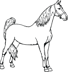 articles realistic horse running coloring pages tag horses