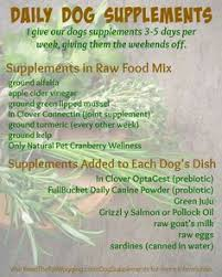 free raw dog food recipes u0026 book review pup stuff pinterest