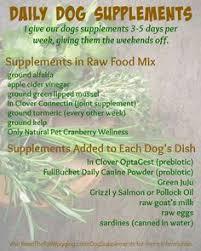 food recipes on raw dog food dog food recipes and dog food