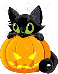 halloween cats a cute black cat on a halloween pumpkin royalty free cliparts