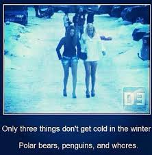 Sluts Memes - three things that don t get cold in the winter imgur