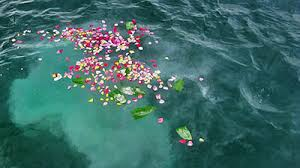 scattering ashes at sea scattering ashes at sea guide 5 important things you need to