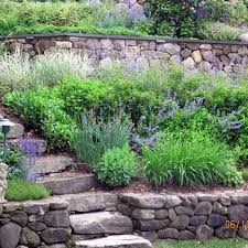 Landscaping Ideas Hillside Backyard Best 25 Landscaping A Slope Ideas On Pinterest Backyard Hill
