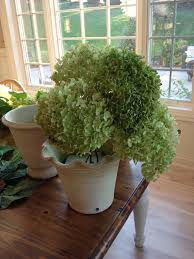 diy how to create dried hydrangea arrangements for home decor