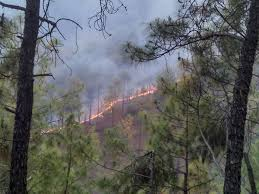 Wild Fire July 2017 by 2016 Uttarakhand Forest Fires Wikipedia