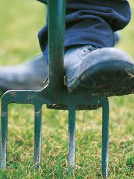 Types Of Hoes For Gardening - garden tools list tools for gardening hgtv