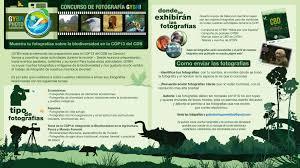 si es auto r lementation uncategorized global youth biodiversity