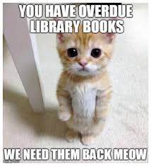 Meme Library - 15 most accurate school librarian memes