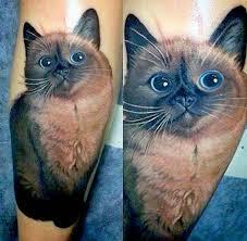 tattoo cat cat tattoo ideas photos of cat tattoos