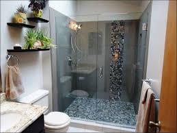 small bathroom ideas with walk in shower fresh walk in shower designs for small bathrooms home design image