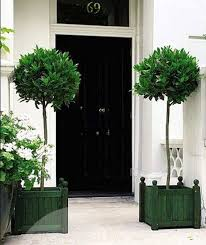 Topiaries Brisbane - fake topiary tree home decorating interior design bath