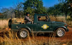 Jeep Safari At Panna Ken River Lodge U0027s 4x4 Open Gypsy Used For