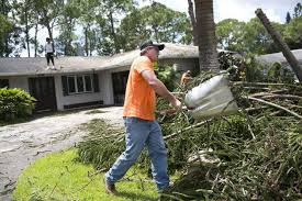 after hurricane irma tree service companies flooded with calls