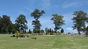 Vases Stolen From Cemetery More Than 100 Bronze Vases Stolen From Castlebrook Cemetery News