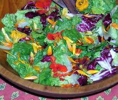 Salad With Edible Flowers - salad greens u0026 edible flowers the gardener u0027s pantry