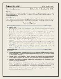 Sample Resume For Experienced Software Engineer Doc by Free Resume Templates Template Google Doc Software Engineer Cv