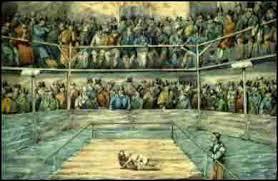 american pit bull terrier history history of animal fighting u0026 baiting