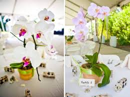 orchid centerpiece simple and inexpensive orchid wedding centerpieces budget brides