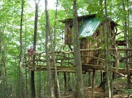 vermont treehouse the hermit thrush treeho vrbo
