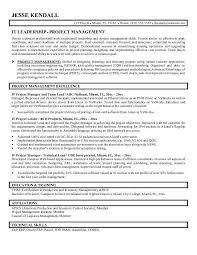 Logistics Management Specialist Resume Information Technology Director Resume Director Of Information