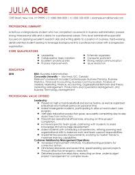 sle professional resume template sle beginner resume sle resumes for entry level sales