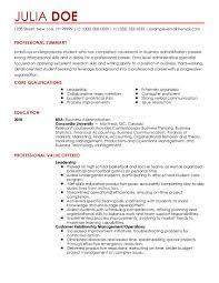 sle professional resume templates sle beginner resume sle resumes for entry level sales