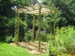 Trellis Wine Cute Trellis For Hops Good Way To Work Them Into The Landscape