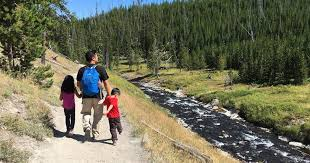 Wyoming travel stroller images Traveling stroller yellowstone national park wyoming JPG