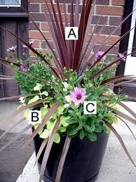 ideas for container gardening get inspired today