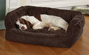 orvis couch dog bed cover orvis