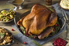 turkey thanksgiving dinner royalty free stock image