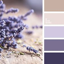 gentle laconic palette shades of purple and lavender blend