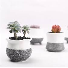 enamour plant pots uk whole whole flower pots gallery to famed