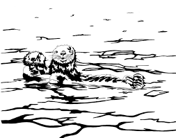 oceanotter publishing animals of alaska for children