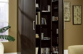cabinet wonderful bathroom storage cabinets with doors and